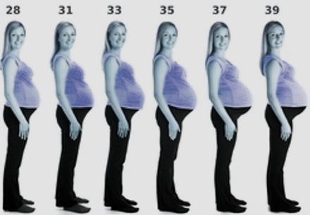 week by week pregnancy symptoms